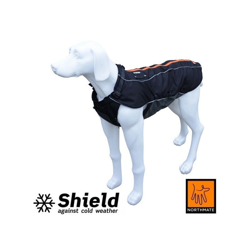 Shield - Cold (2015)
